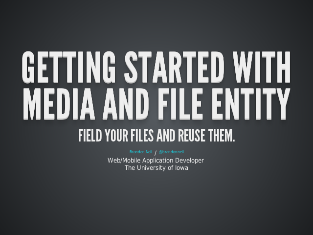 Getting started with Media and File entity – Field your files and reuse them. – Two modules